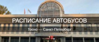 Автобус Тосно—Санкт-Петербург